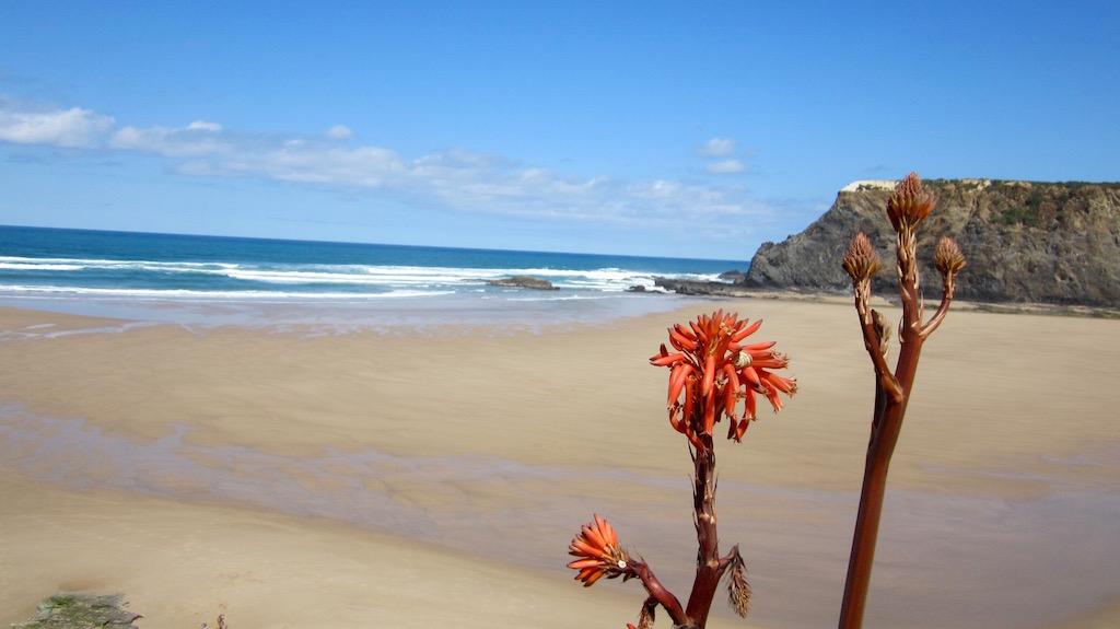 Playa de Odeceixe, en la Costa Vicentina, más desierta y salvaje que las del Algarve. © María Calvo.