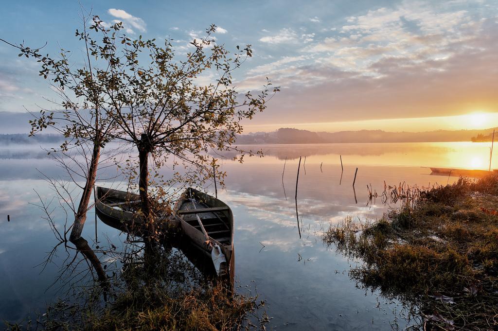 La Pateira de Fermentelos, una laguna con un paisaje único, para los amantes de la naturaleza y de las aves. Foto de Abel C.