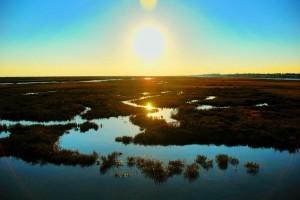 Pantanos de agua salada de Ria Formosa, en Algarve (Portugal) (Foto Flickr de Daeveb)