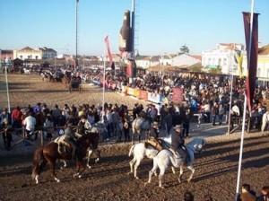 Feria Nacional del Caballo en Golega